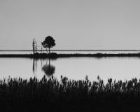 Blackwaterreflexion Arkivbild