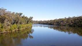 Blackwood River Royalty Free Stock Images