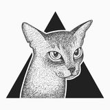 Blackwork abyssinian cat tattoo design. Blackwork dotwork tattoo abyssinian cat in triangle design royalty free illustration