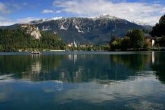 blad λίμνη Στοκ φωτογραφίες με δικαίωμα ελεύθερης χρήσης