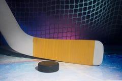 Blad av goaliehockeypinnen Arkivfoto
