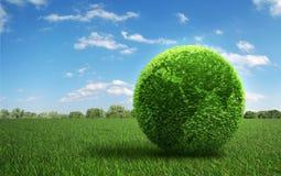 Blad behandelde Aarde op een grasgebied Stock Fotografie