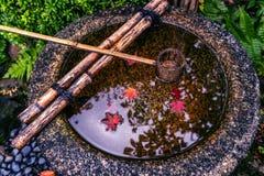 Blad die van de herfst op water drijven royalty-vrije stock afbeeldingen