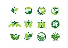Blad, ecologie, installatie, embleem, mensen, groene wellness, aard, symbool, pictogram Royalty-vrije Stock Afbeelding