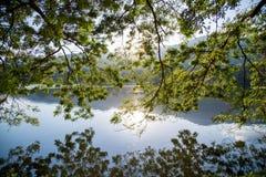 Blad en boom met berg en de lichte achtergrond van de zonsonderganghemel Stock Foto