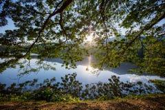 Blad en boom met berg en de lichte achtergrond van de zonsonderganghemel Royalty-vrije Stock Afbeeldingen