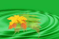 Blad en groene golven Stock Afbeelding