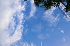 Blad en kabel op blauwe hemel en wolkenachtergrond royalty-vrije stock fotografie