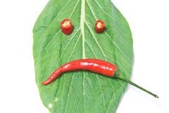 Blad en Spaanse peper, chagrijnig blik chagrijnig blik stock foto's
