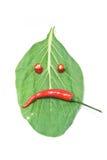 Blad en Spaanse peper, chagrijnig blik chagrijnig blik royalty-vrije stock afbeelding
