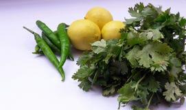 blad för citron och för koriander för grönsakgräsplanchili som isoleras på vit backgroynd royaltyfri bild