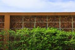 Blad för tegelstenvägg och gräsplanoch blå himmel Royaltyfri Bild