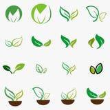 Blad, installatie, embleem, ecologie, mensen, groene wellness, bladeren, het pictogramreeks van het aardsymbool van ontwerpen Royalty-vrije Stock Afbeeldingen