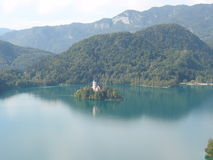 Blad jezioro Zdjęcie Royalty Free