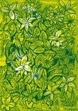 Blad och blommabakgrund Arkivbild