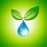 Blad- och vattendroppe