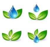 Blad- och vattendroppuppsättning Arkivbilder