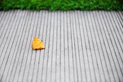 Blad op concrete vloer met groen gras op achtergrond De herfstbegin stock foto