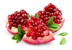 blad pomegranaten sött Arkivfoto