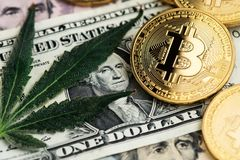Blad van de cannabis het Medische Marihuana met de muntstukken van Bitcoin Cryptocurrency en Amerikaanse dollarbankbiljetten stock afbeelding