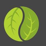 Blad Yin Yang Logo Stock Foto's