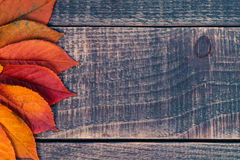 Bladbakgrund på en trätabell Arkivbild