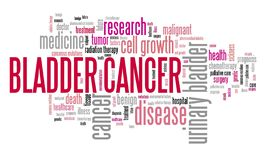 Bladder cancer word cloud royalty free stock photo