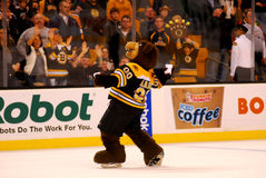 Blade Boston Bruins mascot Stock Images