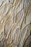 Blade calcite growths in cave. Landscape of cave roof  stalactite sequences and voids Stock Image