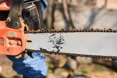 Blade of a chainsaw in the garden Stock Image