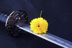 Blade and flower Stock Photos