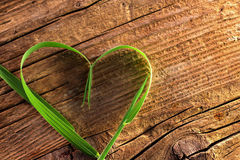 Blade of grass as heart stock photography