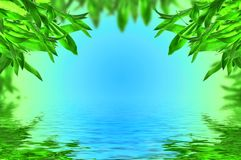 Bladeren акÑÑÑ op blauwe achtergrond Royalty-vrije Stock Afbeelding