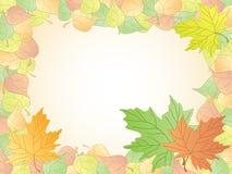 Bladeren vector illustratie