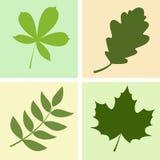 4 bladeren Royalty-vrije Stock Afbeeldingen