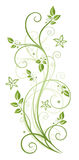 Bladeren, bloemen, de lente Royalty-vrije Stock Foto's