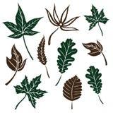 Bladeren, de herfst Royalty-vrije Stock Afbeelding