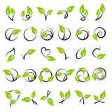Bladeren. Elementen voor ontwerp. Royalty-vrije Stock Foto's