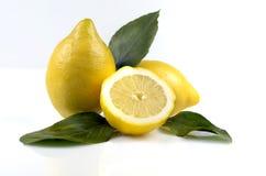 Bladeren en citroenen Stock Afbeeldingen