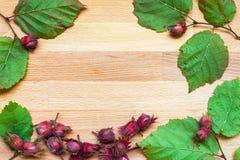 Bladeren en hazelnoten op een houten raad Royalty-vrije Stock Foto