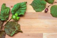 Bladeren en hazelnoten op een houten raad Stock Afbeelding