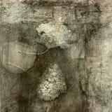 Bladeren en Steen royalty-vrije illustratie