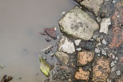Bladeren en stenen in de de herfstvulklei Stock Afbeelding