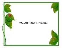 Bladeren met lieveheersbeestjeskader vector illustratie