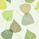 Bladeren - naadloos patroon Stock Fotografie