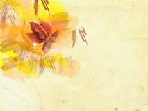 Bladeren op grungeachtergrond stock illustratie