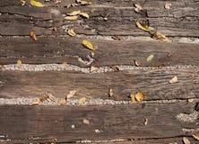 Bladeren op houten grond Royalty-vrije Stock Afbeelding