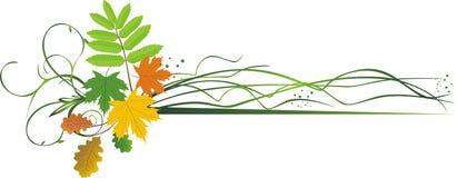 Bladeren. Samenstelling voor banner Stock Foto