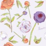 Bladeren, stammen en bloeiwijzen van pioenen vectorillustratie Beeld met oranje, violette en witte bloemen Eindeloos patroon stock illustratie