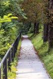 Bladeren vallen de weg Stock Afbeelding